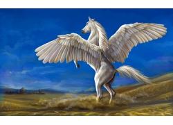 长着翅膀的白马