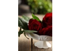 瓷盆红玫瑰花