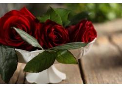 白色盆里的红玫瑰花