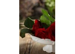 盘子里的红色玫瑰花