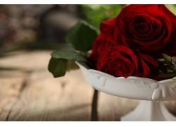 白盆红玫瑰花