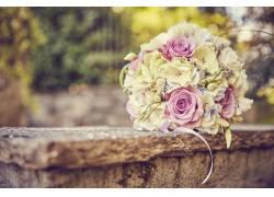 粉色玫瑰花束摄影