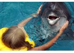 女人与海豚