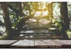 唯美的木板道高清摄影