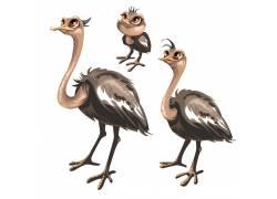 手绘鸵鸟卡通插画图片