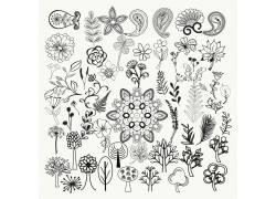 复古风黑白色手绘花卉
