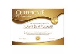 金色金属证书