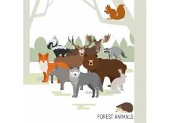 树林动物合集图片
