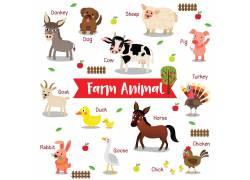 英文动物识图图片