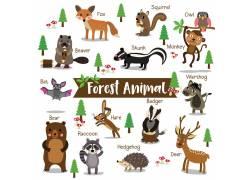 英文卡通小动物图片