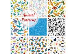 矢量动物设计图片