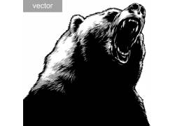 卡通熊动物设计图片