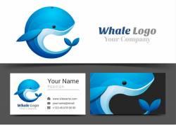卡通海豚设计图片