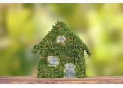 植物拼接的房屋轮廓