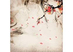 梅花花瓣中国风背景