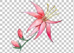 红色水墨花朵