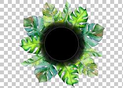 绿色叶子花环