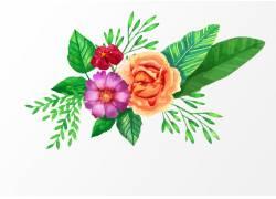 水彩花朵素材
