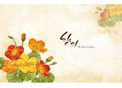 手绘小花朵