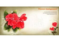 大红色花朵背景