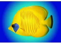 手绘黄蓝热带鱼