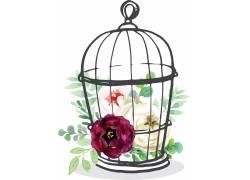 鲜花与鸟笼