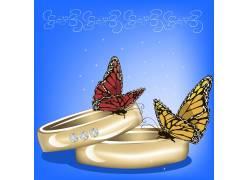 蝴蝶与戒指