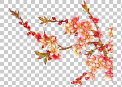 彩色鲜艳的水墨花朵