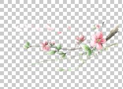 水墨花朵与绿叶