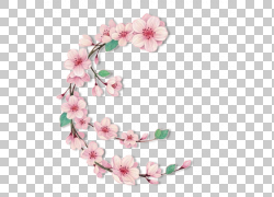 粉色水墨花朵