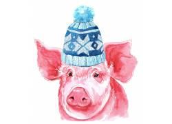 戴帽子的红色小猪