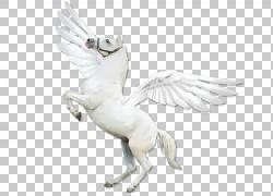 诗人,Pegasus PNG剪贴画动物群,鸟,封装的PostScript,飞马座,预览图片